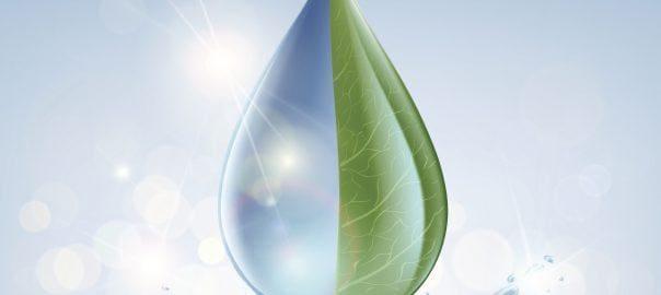 Oczyszczanie ścieków - bio